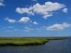 Brigantine Salt Marsh