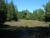 Dry natural pond, Glassboro FWMA