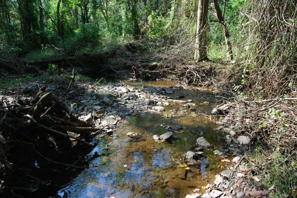 Harry\'s Brook, Princeton-Brunswick Shale