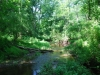 Woolsey Brook, Hopewell Mercer County