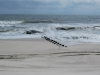 Marine Swash Zone