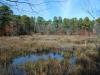 McCarthy's Lakes