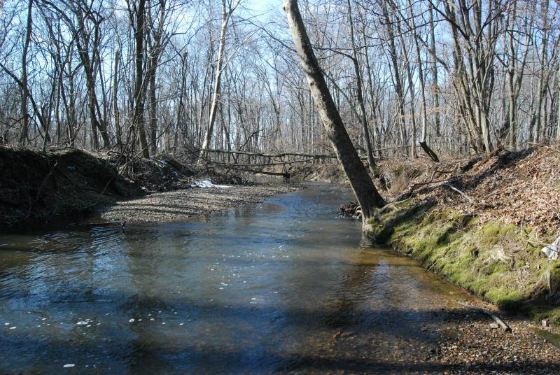 Shabakunk Creek Ewing Mercer Co